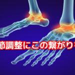 距腿関節調整