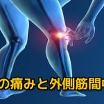 下肢と外側中隔