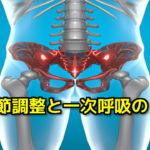 仙腸関節とのリンク