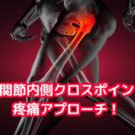 股関節疼痛アプローチ