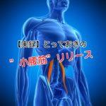 WiMn0J8_9DrZ8Jf1484670201_1484670352