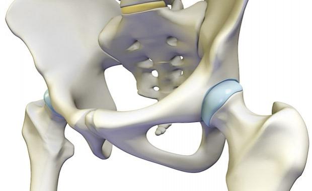anatomic-hip-620x380-zc-ns