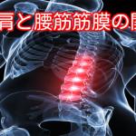 首肩と腰の関係