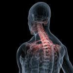 cervical-spine-injury-lawyer