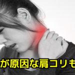 頭蓋と肩コリ