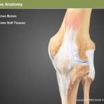 膝OAは加齢で骨のせいだと思っていた僕が、患者さんのアライメントを変えた時、、、