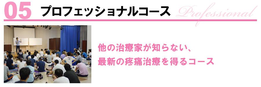 04上級マスターコース master 疼痛治療の極みを得る