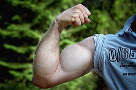 muscles-811479__180
