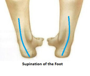 supination-of-the-foot